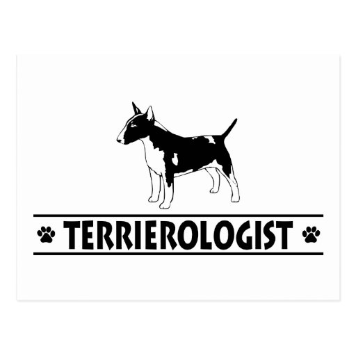 Humorous Miniature Bull Terrier Post Card