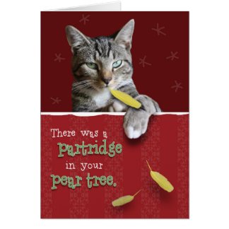 Humorous Naughty Cat Christmas Card