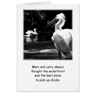 Humorous Pelicans Card