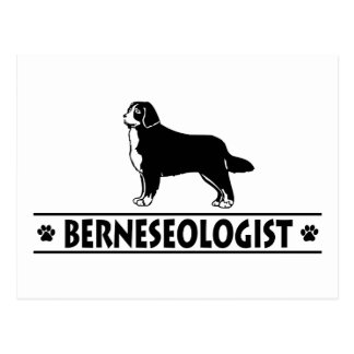 Humourous Bernese Mountain Dog Postcard