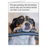 Humourous Birthday Card - Dog Pondering Life