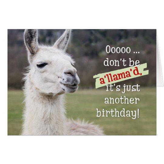 Humourous Birthday Card The Happy Llama