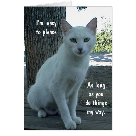 Humourous Card, white cat, blank inside Card