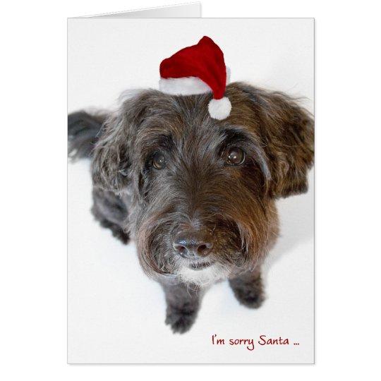 Humourous Christmas Card - Dog in Tiny Santa