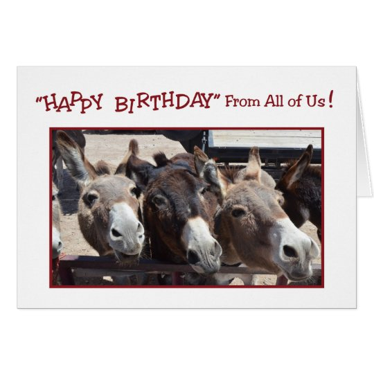 Humourous Donkey Group Birthday, From All of Us Card