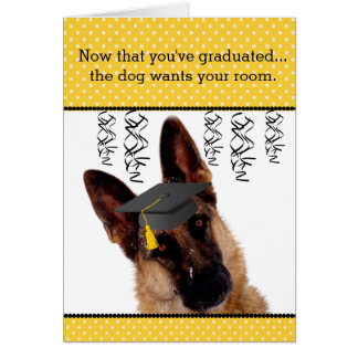 Humourous Graduation Card with German Shepherd