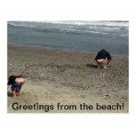 Humourous postcard