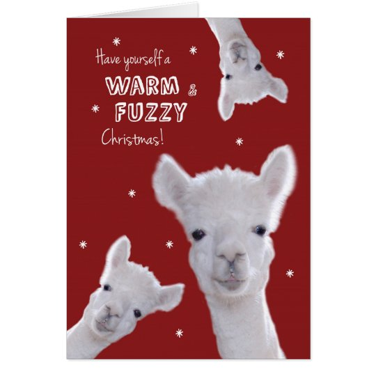 Humourous Warm & Fuzzy Christmas Card with Llamas