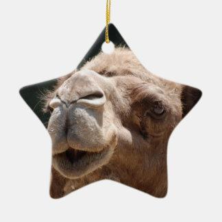 Hump Day Camel Ceramic Star Decoration