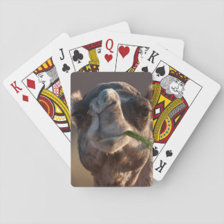 Hump Day Camel Feasting on Green Grass Playing Cards