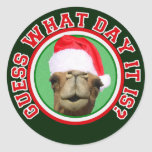 Hump Day Camel Guess What Day It Is Christmas Round Stickers