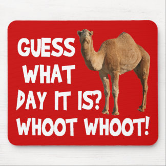 Hump Day Camel Guess What Day It Is Mouse Mat