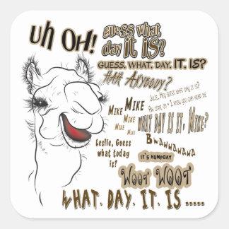 Hump Day Camel Square Sticker