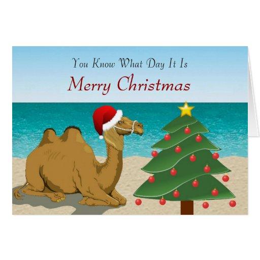 Hump Day Camel with Santa Hat Christmas Card