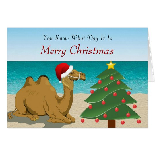Hump Day Camel with Santa Hat Christmas Card