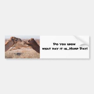 Hump Day Camels Bumper Sticker