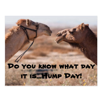 Hump Day Posts