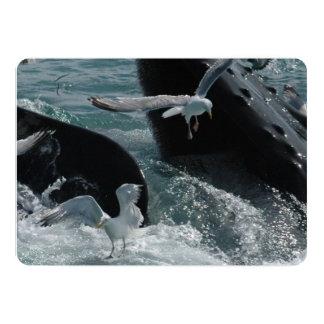 Humpback Whale 13 Cm X 18 Cm Invitation Card