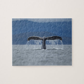 Humpback Whale 2 Puzzles