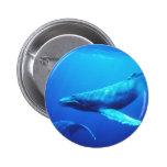 Humpback Whale 6 Cm Round Badge