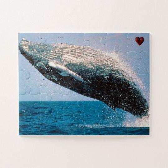 Humpback Whale Alaska Jigsaw Puzzle | Zazzle.co.uk