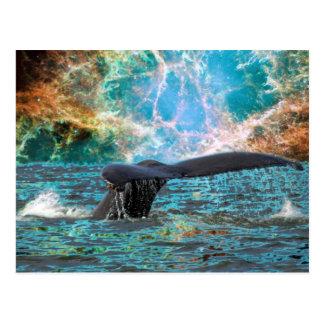 Humpback whale and Supernova Postcard