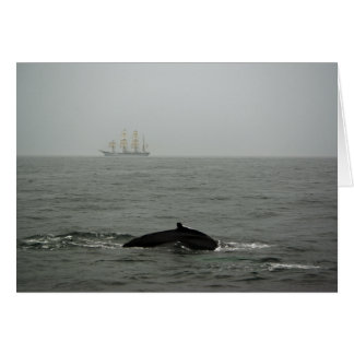 Humpback Whale and Tall Ship Card