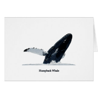 Humpback Whale Breaching Greeting Cards