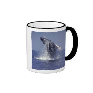 Humpback whale breaching Megaptera Mug
