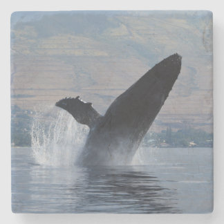 humpback whale breaching stone coaster