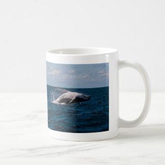 Humpback Whale Breaching Surfers Paradise Basic White Mug