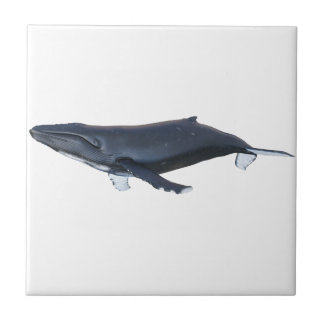 Humpback Whale in Profile Tile