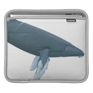 Humpback Whale iPad Sleeve