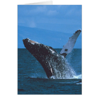 Humpback whale Jumping Greeting Card