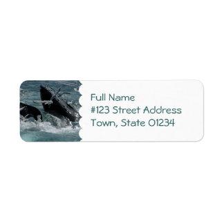 Humpback Whale Mailing Label Return Address Label