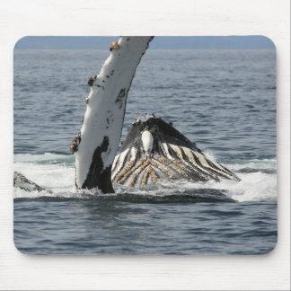 Humpback Whale Mouse Mat
