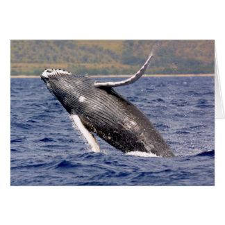 Humpback Whale Splashing Greeting Cards