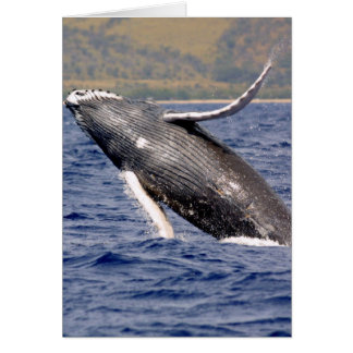 Humpback Whale Splashing Greeting Card
