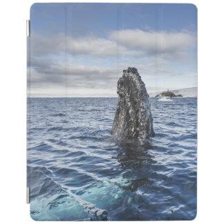 Humpback Whale Spyhops | Hope Bay, Antarctica iPad Cover