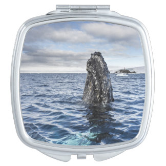 Humpback Whale Spyhops | Hope Bay, Antarctica Makeup Mirror
