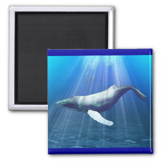 Humpback Whale Watercolor Square Magnet
