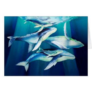 Humpback Whales Card
