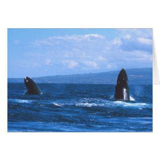 Humpback Whales Jumping Greeting Card