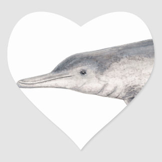Hunchbacked dolphin of Australia - Australian Heart Sticker