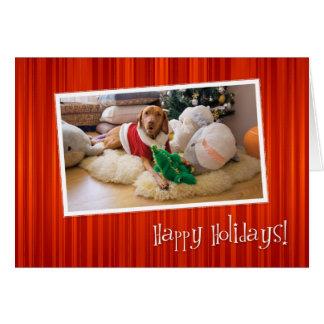 Hungarian Vizsla Christmas Card 010