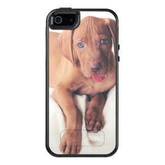 Hungarian Vizsla Puppy OtterBox iPhone 5/5s/SE Case