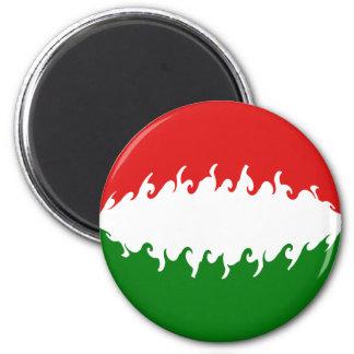 Hungary Gnarly Flag Fridge Magnets