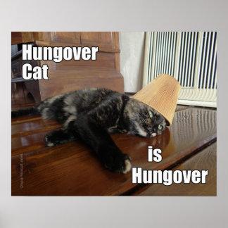 Hungover Tortoiseshell Cat Poster