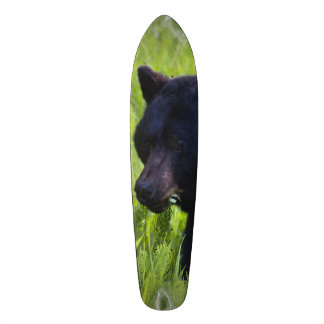 Hungry Black Bear Skate Board