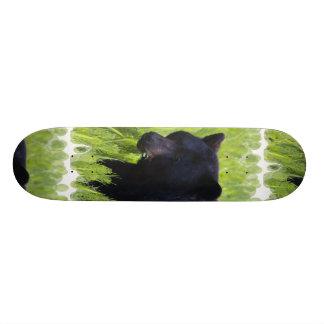 Hungry Black Bear  Skateboard